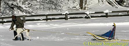 avalon-schlitten-20090122-1