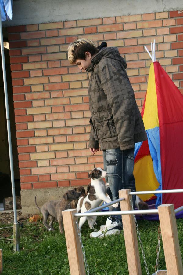 EVita-20091111-Andreas-1001