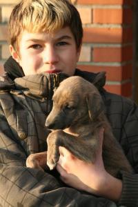 EVita-20091111-Andreas-1015
