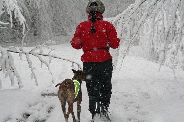20101127-snow-1015