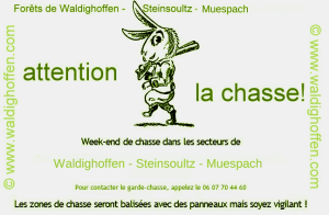 Attention_La_Chasse-vert