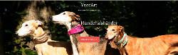 yuccart_banner_250x78
