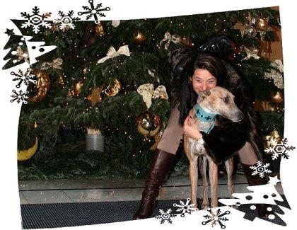 Weihnachtsbaum2012