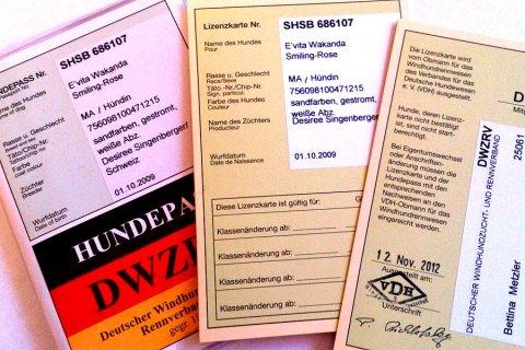 DWZRV-20121112-Lizenzen-Evita