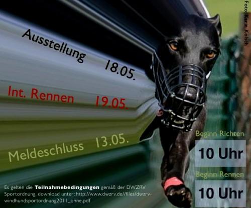 20130519-RennenFreiburg-Grey
