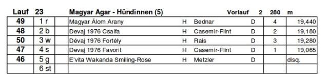 20130728-HildesheimVorlauf
