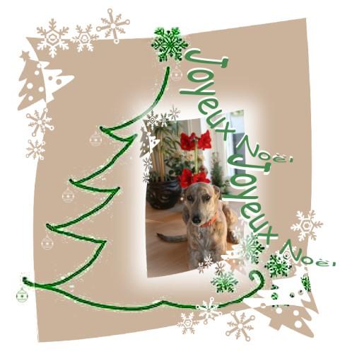 2014-Evita_Weihnachten-small