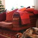 Evita am Weihnachtstag beim Christbaum
