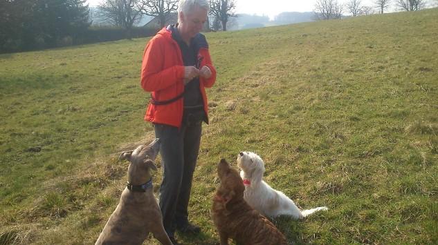... und ein Guddi für alle braven Hunde!