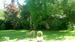 Frühsommer-Garten im Mai