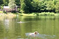 .. hätte ich doch etwas zum Schwimmen mitgenommen!!!