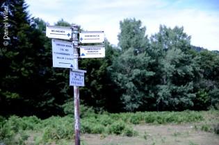 Wir sind auf dem richtigen Rück-Weg ins Tal.