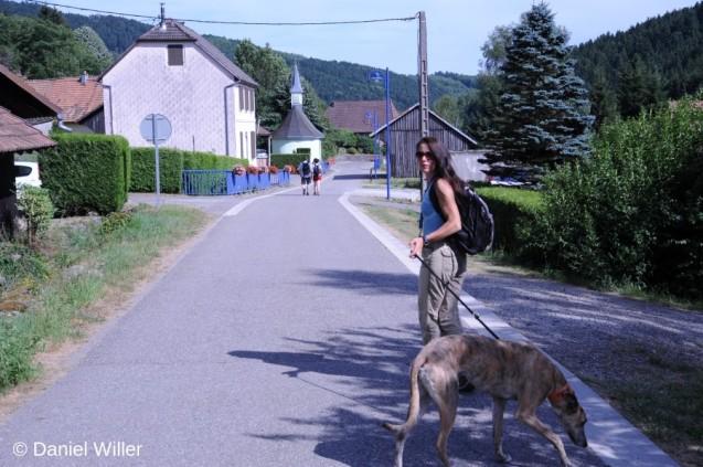 20150712-Neuweiher_Hiking_20