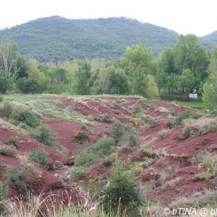 Hier sieht man die typisch rotbraune Erde