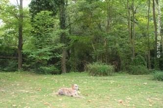Evita liegt erst mal ins Gras