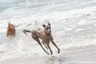... und wieder an den Strand.