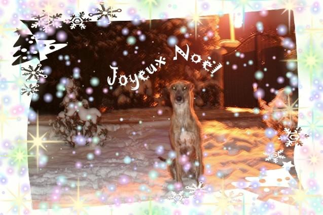 Weihnachten_Blog4Evita_2015