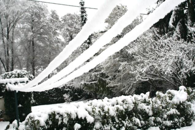 20160225-Evita_Snow-02-Garten