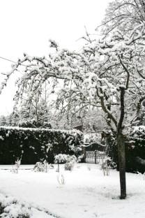 20160225-Evita_Snow-03-Garten