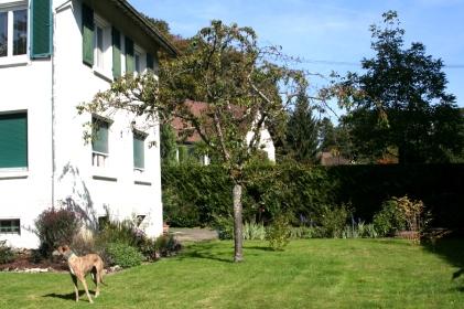 20160928-0036_jardin_maison