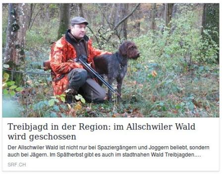 20161114-treibjagd_allschwil