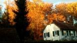 La Maison des Lys golden beleuchtet!