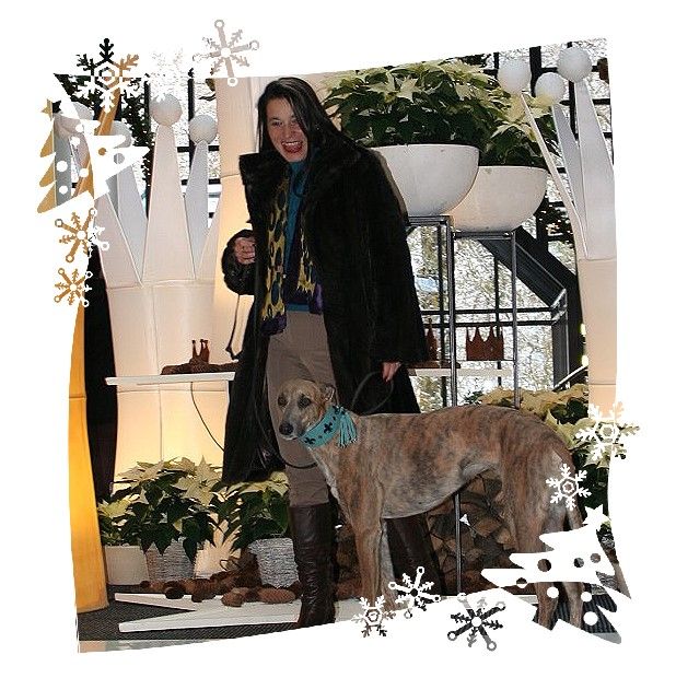 merry_christmas_evita_et_moi_grandhotel_20121201-093