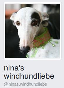 NinasWindhundliebe