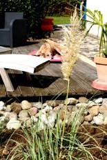 Mein Gräser-Garten 😍
