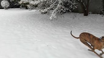 20180318-Winter_fast_Ostern-02