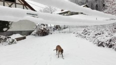 20180318-Winter_fast_Ostern-04
