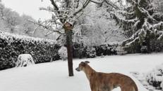 20180318-Winter_fast_Ostern-05