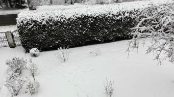 20180318-Winter_fast_Ostern-14