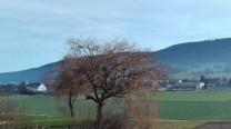 20181227-Promenade_MetzerlenMariastein-041