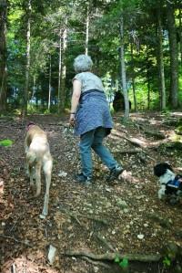 Evita will als Bergziege voran 😜
