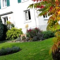 Evita im Herbstgarten mit neu angelegtem runden Lavendel-Beet.