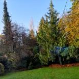 MdL_Herbstgarten_20191112