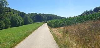 20200707-Gaby_Allschwil_Landscape-1