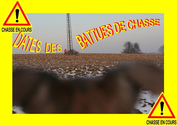 Attention_Chasse_en_cours_600x430